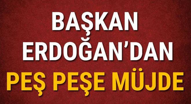 Vahid Halilhodzic: Trabzonspor en az 3 yıl şampiyon olamaz